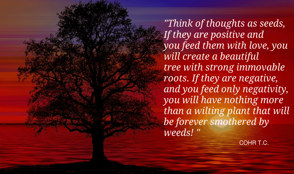 Seeds Of Thoughts